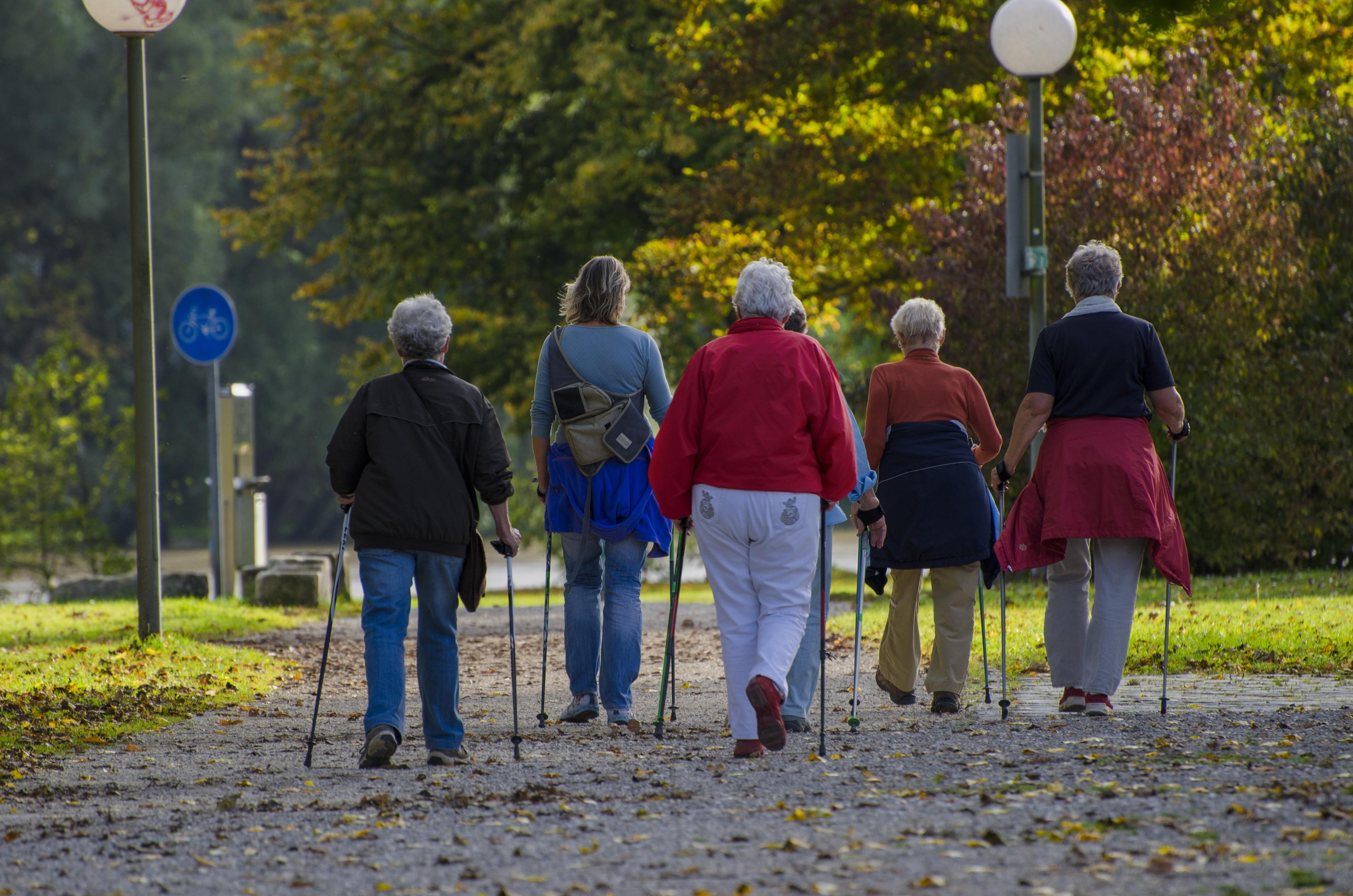 magas vérnyomás nordic walking alma magas vérnyomás ellen
