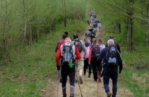 NORDIC WALKING - Land Art körút (1,5km)